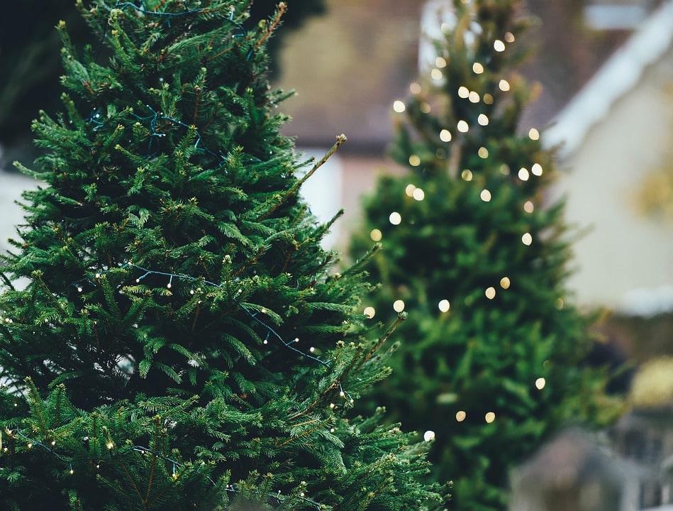Как открыть бизнес по производству искусственных елок