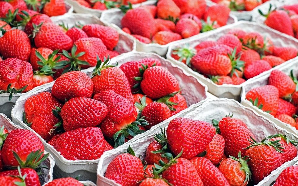 Сбыт ягоды