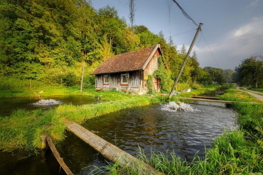 Ферма для разведения рыбы